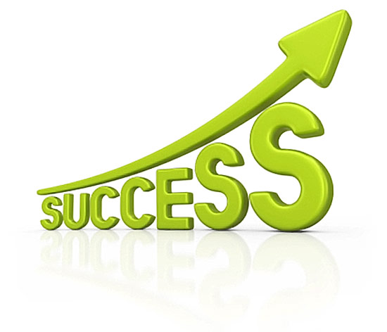 Success with Navega Bem - Web Design